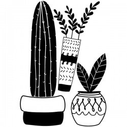 Adhesivo de vasos con cactus