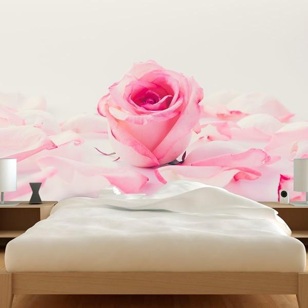 Fotomural pétalos de rosa