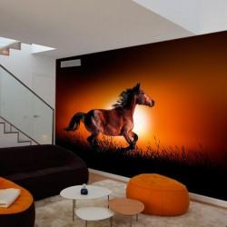 Mural decorativo caballo salvaje