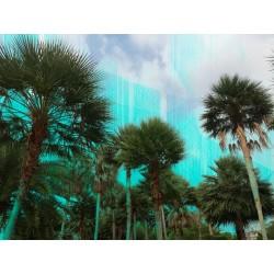 Fotomural de vegetación