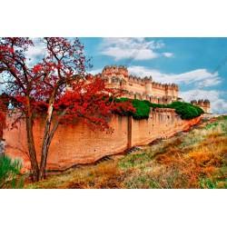 Mural de pared castillo medieval