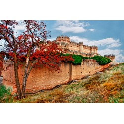 Mural de pared castillo medieval