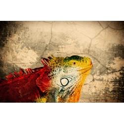 Fotomural camaleón vintage