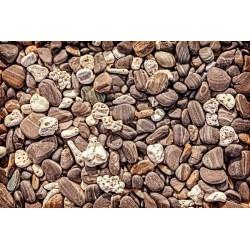 Fotomural piedras de playa