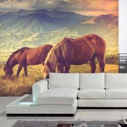 Fotomural caballos en la montaña