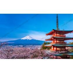 Mural decorativo monte Fuji