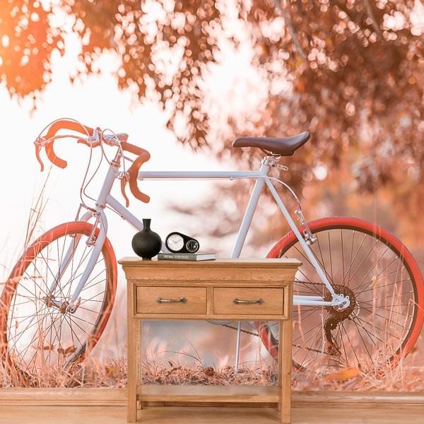 Fotomural paseo en bicicleta