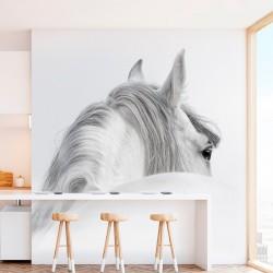 Fotomural diseño de un caballo