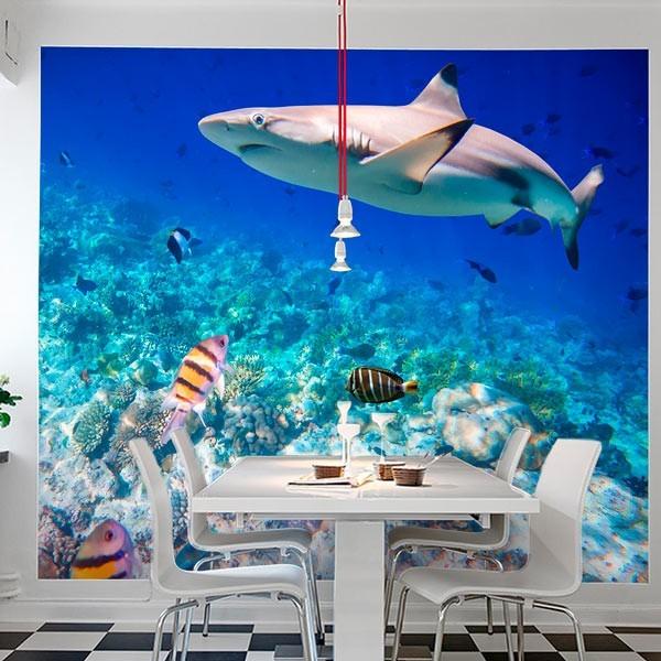 Fotomural tiburón