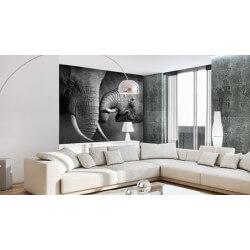 Fotomural de Elefantes