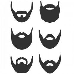 Vinilo estilos de barba