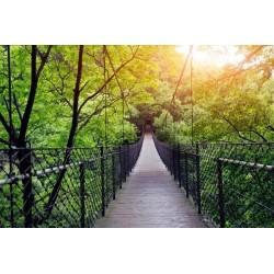 Fotomural de puente colgante