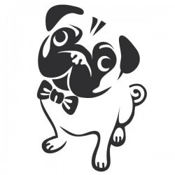 Vinilo bulldog francés