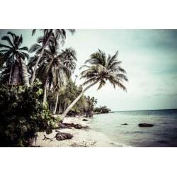 Fotomural playa paradisíaca