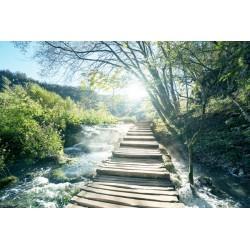 Fotomural camino sobre el rio