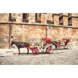 Fotomural carro de caballo
