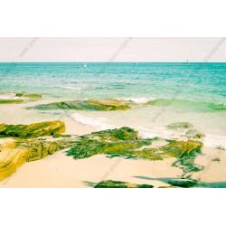 Fotomural playa tranquila