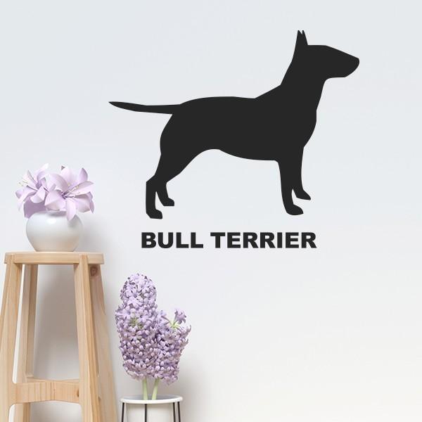 Vinilo bull terrier